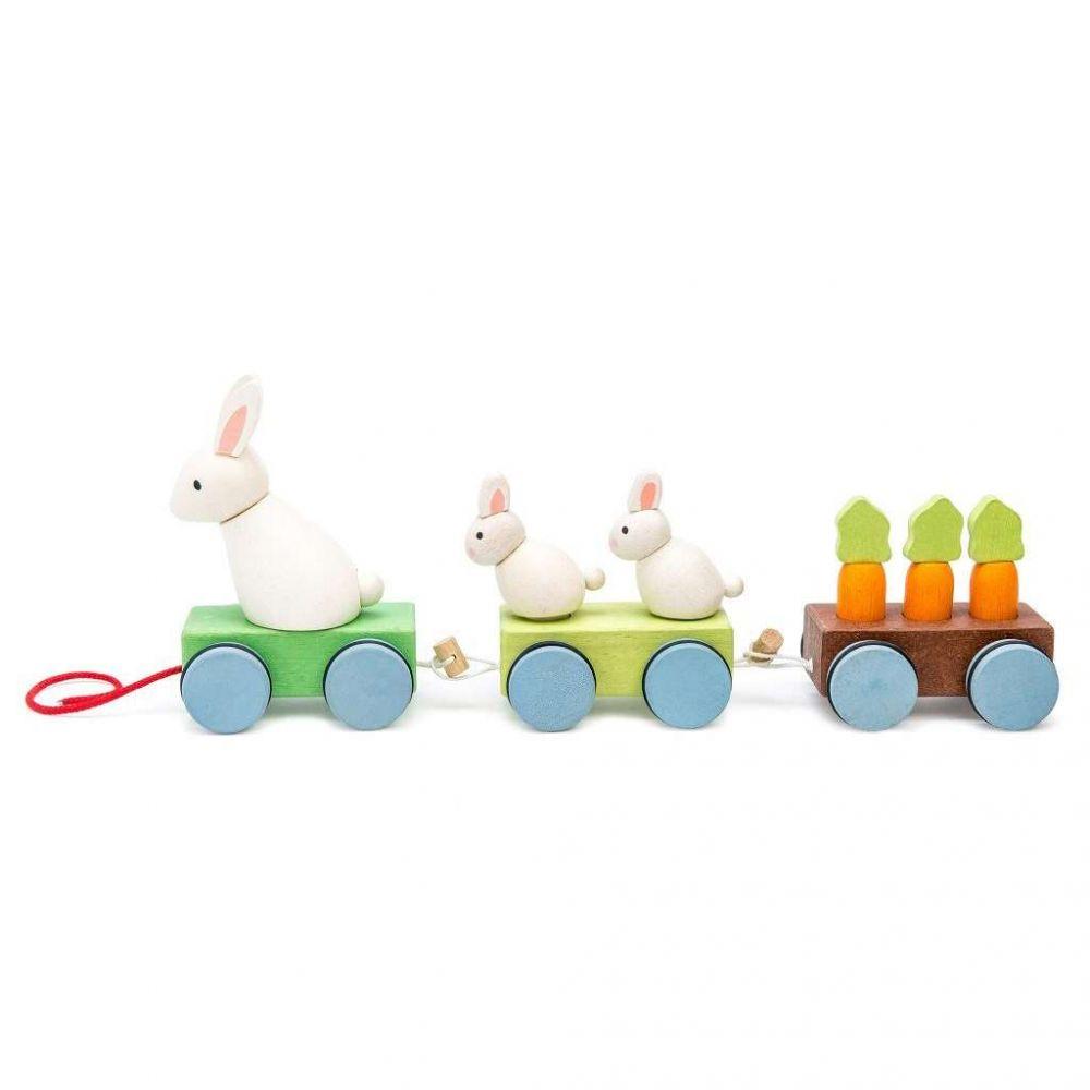 PL026-Bunny-Train